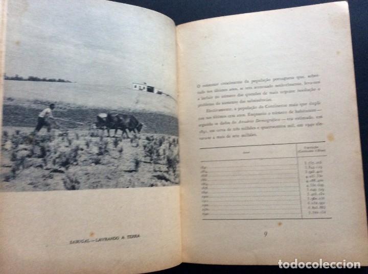 Libros antiguos: CADERNOS DO RESSURGIMENTO NACIONAL: COLONIZAÇÃO INTERNA, años 40. 1.ª edição. - Foto 5 - 173392880