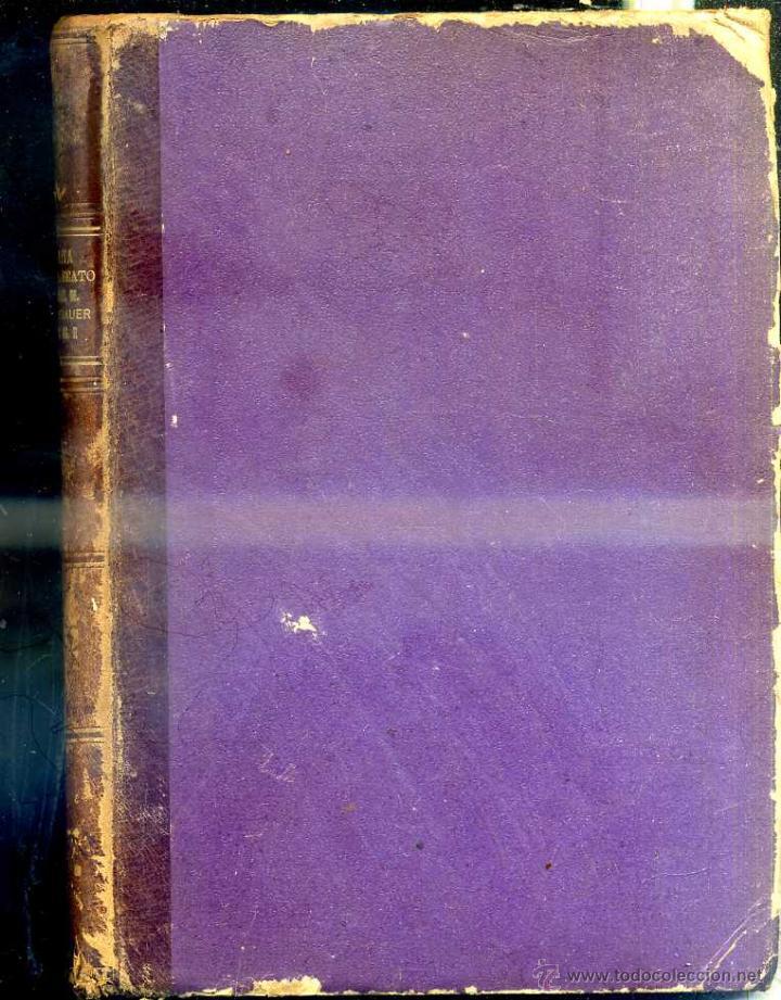 Libros antiguos: HARINGER : VITA DEL BEATO CLEMENTE Mª HOFBAUER (TIP. VATICANA, ROMA, 1888) - Foto 3 - 50072123