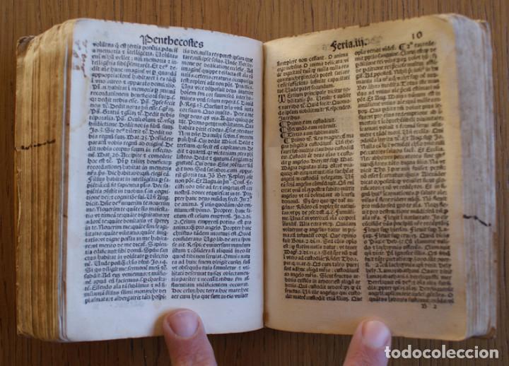 Libros antiguos: Año 1521. Libro siglo XVI en pergamino. Barlete Sermones exactissime ipsessi: S. Bendictu britanicu - Foto 21 - 109042727