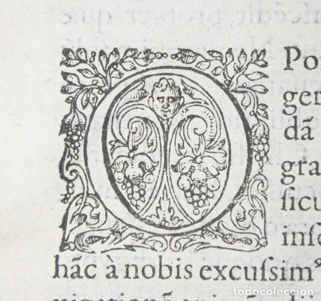 Libros antiguos: 4 LIBROS SIGLO XVI. 1581. PERGAMINO. D. IOANNIS CHRYSOSTOMI ARCHIEPISCOPI CONSTANTINOPOLITANI OPERUM - Foto 8 - 118003707