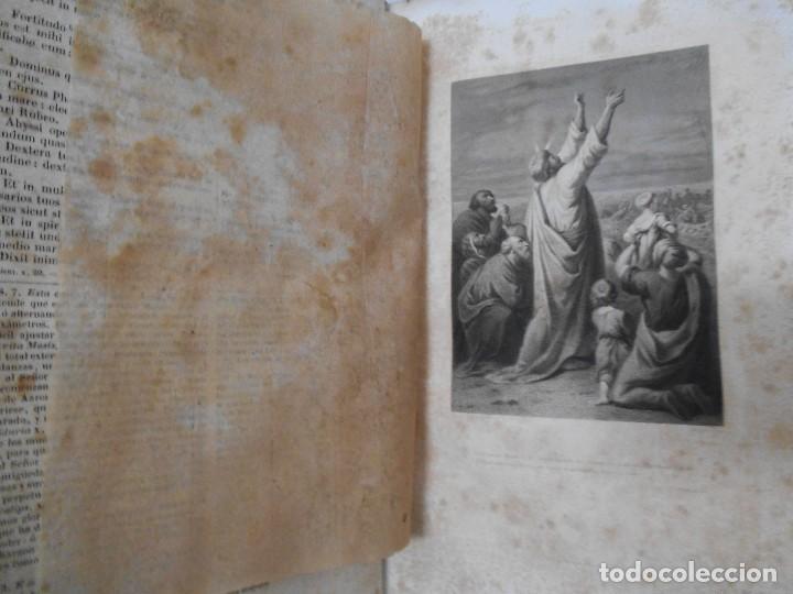 Old books: La Santa Biblia - 1852 - Completa - Laminas Grabados Mapas - Gofrada - P. Riera - Foto 10 - 124025171