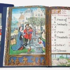 Libros antiguos: LOTE FACSÍMIL MOLEIRO. Lote 155691241