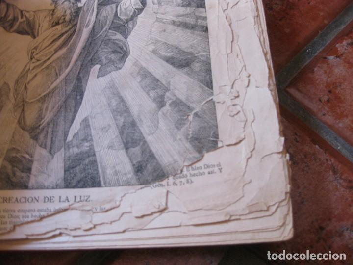 Libros antiguos: album de historia sagrada santa biblia en imagenes . julio schnorr litografias ramon tarrago 1887 - Foto 7 - 169796468