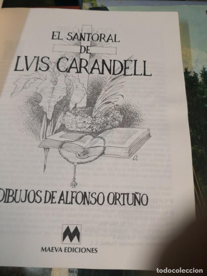 Libros antiguos: EL SANTORAL DE LVIS Luís CAARANDELL. DIBUJOS ORTUÑO. MAEAVA. 1996 407 PAG - Foto 4 - 171296632