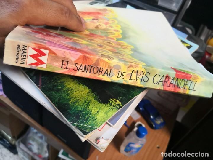 Libros antiguos: EL SANTORAL DE LVIS Luís CAARANDELL. DIBUJOS ORTUÑO. MAEAVA. 1996 407 PAG - Foto 10 - 171296632