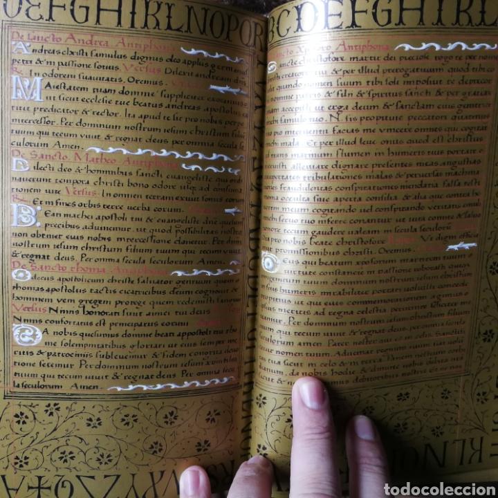 Libros antiguos: Facsímil Libro de Horas de Enrique IV de Francia. Moleiro - Foto 6 - 163766866