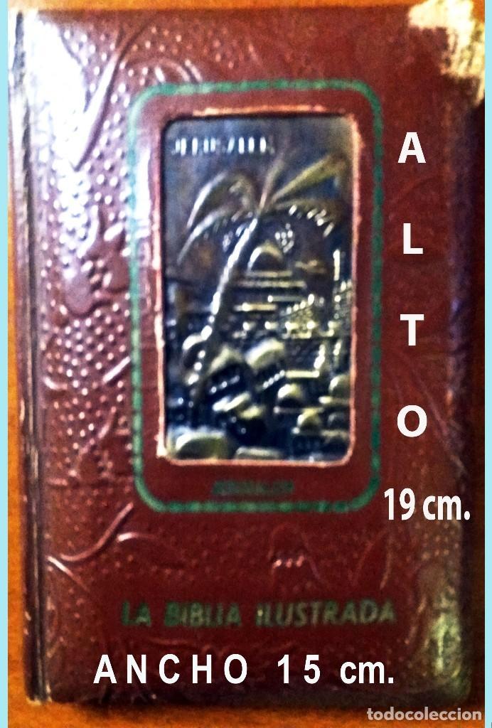 LA BIBLIA ILUSTRADA HEBREA CON 125 CUADROS BIBLICOS POR G. DORE. EDIT. 1953 POR SINAI EN ESPAÑOL. (Libros Antiguos, Raros y Curiosos - Religión)