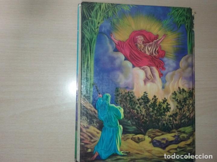 Libros antiguos: LA BIBLIA ILUSTRADA - EDICIONES PAULINSAS - Foto 11 - 197863713