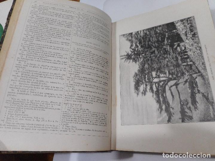Libros antiguos: La Sagrada Biblia ( Tomo II Antiguo testamento) Q1310W - Foto 3 - 208683005
