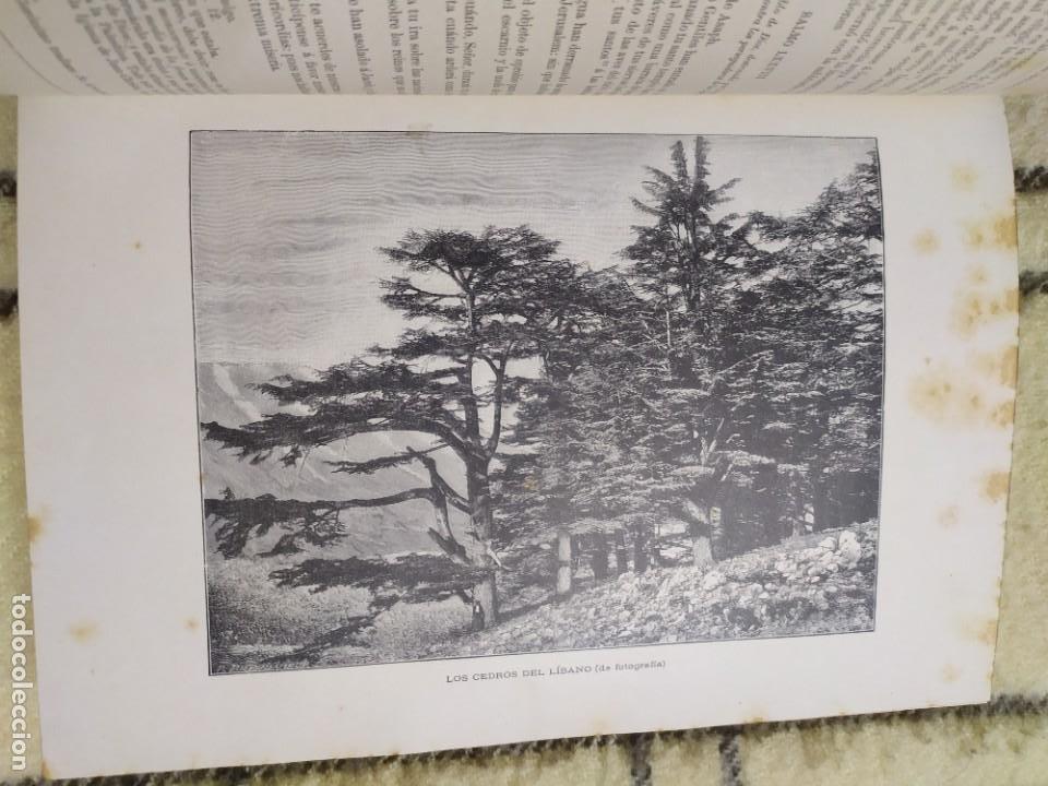 Libros antiguos: 1890. La Sagrada Biblia. Montaner y Simón. - Foto 4 - 210068360