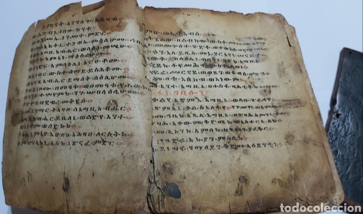 Libros antiguos: CODICE ETIOPE CRISTIANO COPTO S.XVII. MANUSCRITO BIBLIA ANTIGUA - Foto 3 - 230609675