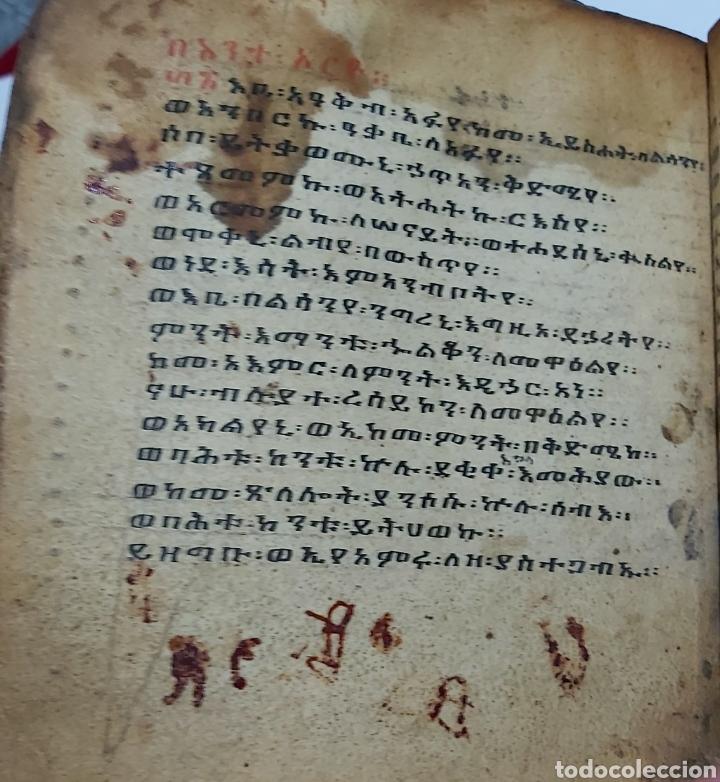 Libros antiguos: CODICE ETIOPE CRISTIANO COPTO S.XVII. MANUSCRITO BIBLIA ANTIGUA - Foto 7 - 230609675