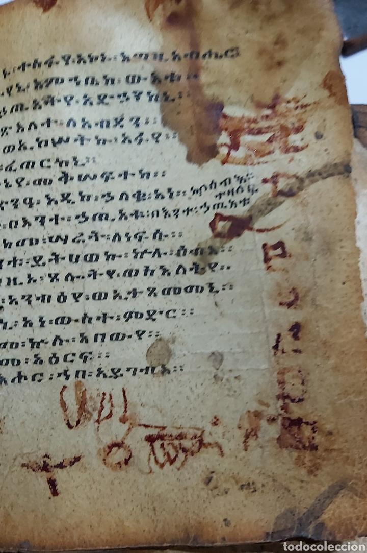 Libros antiguos: CODICE ETIOPE CRISTIANO COPTO S.XVII. MANUSCRITO BIBLIA ANTIGUA - Foto 8 - 230609675