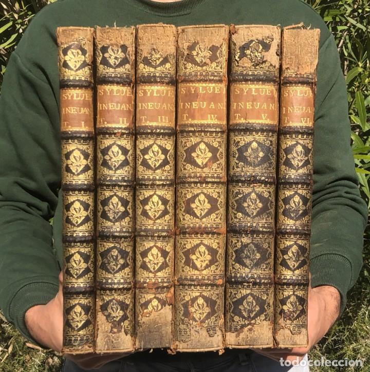1728 - COMMENTARIORUM IN TEXTUM EVANGELICUM - JUAN DE SILVEIRA - BIBLIA - EVANGELIO (Libros Antiguos, Raros y Curiosos - Religión)
