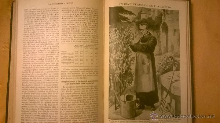 Libros antiguos: COLECCION MODERNA DE CONOCIMIENTOS UNIVERSALES (LA SOCIEDAD HUMANA) - JACKSON INC. - 1928 - Foto 14 - 53345028