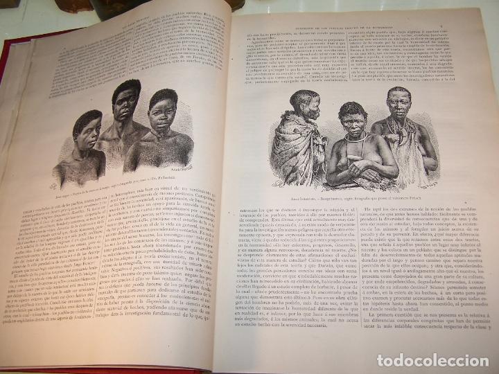 Libros antiguos: Las razas humanas. Federico Ratzel. 2 tomos. Montaner y Simon. Barcelona. 1888. - Foto 4 - 170858015