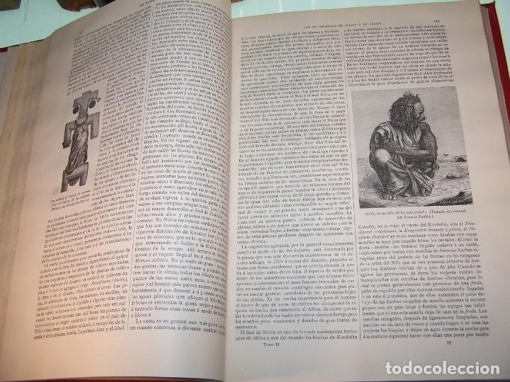 Libros antiguos: Las razas humanas. Federico Ratzel. 2 tomos. Montaner y Simon. Barcelona. 1888. - Foto 20 - 170858015