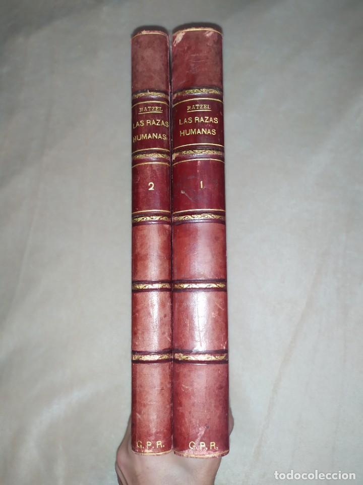 1888. LAS RAZAS HUMANAS. FEDERICO RATZEL. MONTANER Y SIMÓN. (Libros Antiguos, Raros y Curiosos - Pensamiento - Sociología)