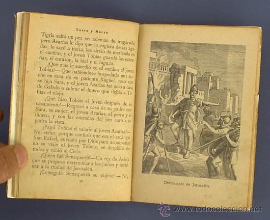 Libros antiguos: HISTORIA SAGRADA POR MARIANO TORRE Y MARCO. EDITORIAL SATURNINO CALLEJA. MADRID, SIN FECHA. - Foto 4 - 25393434