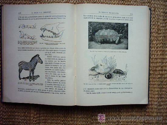 Libros antiguos: ELEMENTOS DE BIOLOGIA GENERAL Y ESPECIAL - ENRIQUE RIOJA, ORESTES CENDRERO - PRIMERA EDICION - 1930 - Foto 2 - 26796216