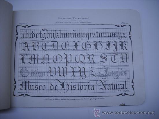 Libros antiguos: CALIGRAFIA. VALLICIERGO: NUEVO METODO DE CARACTERES GOTICOS Y DE ADORNO. MADRID,HACIA 1900.23X16 - Foto 4 - 27219854