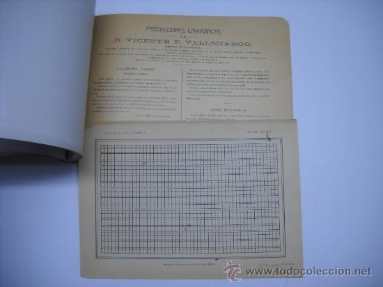 Libros antiguos: CALIGRAFIA. VALLICIERGO: NUEVO METODO DE CARACTERES GOTICOS Y DE ADORNO. MADRID,HACIA 1900.23X16 - Foto 8 - 27219854