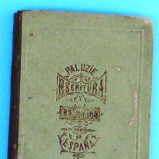 Libros antiguos: ESCRITURA Y LENGUAJE DE ESPAÑA. POR ESTEBAN PALUZÍE. BARCELONA, 1870.. Lote 44243268