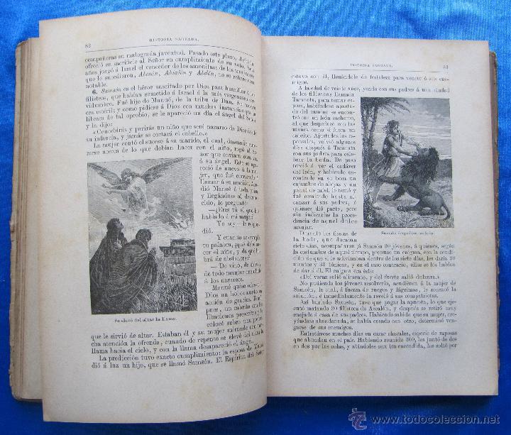 Libros antiguos: HISTORIA SAGRADA. POR EL RVDO. PEDRO GÓMEZ. EDITORIAL SATURNINO CALLEJA, MADRID, 1899. - Foto 4 - 49936329
