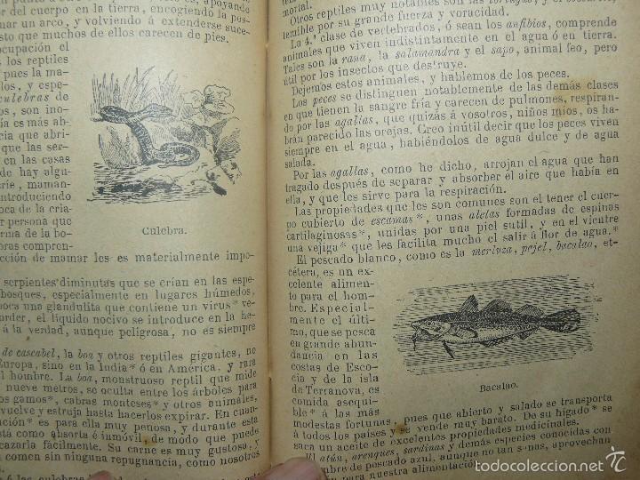 Libros antiguos: FLORA O LA EDUCACION DE UNA NIÑA - ED.PALUZIE - AÑO 1907 - Foto 3 - 174223404
