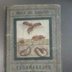 Libros antiguos: ATLAS DE BOLSILLO. MARIPOSAS Y ORUGAS. COLECCIÓN ESTUDIO SECCIÓN CIENCIAS NATURALES.. Lote 129545220