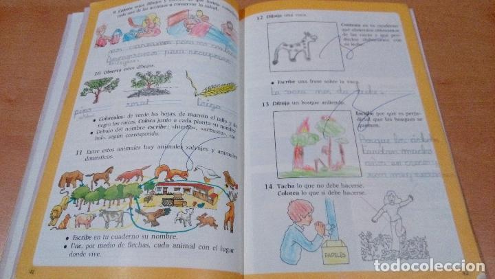 Libros antiguos: nuestra experiencia - 2 egb - anaya - aula 3 - pintado - plastificado - buen estado - ver fotos - Foto 3 - 111468323