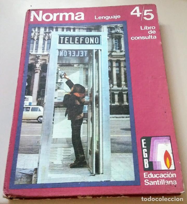 NORMA 6 LIBRO CONSULTA LENGUAJE EGB SANTILLANA 1972 (Libros Antiguos, Raros y Curiosos - Libros de Texto y Escuela)