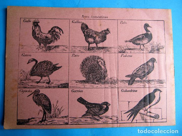 Libros antiguos: CUADERNO DE ESCRITURA INGLÉS. Nº 3. MARCA X, SIN FECHA. - Foto 3 - 140149054