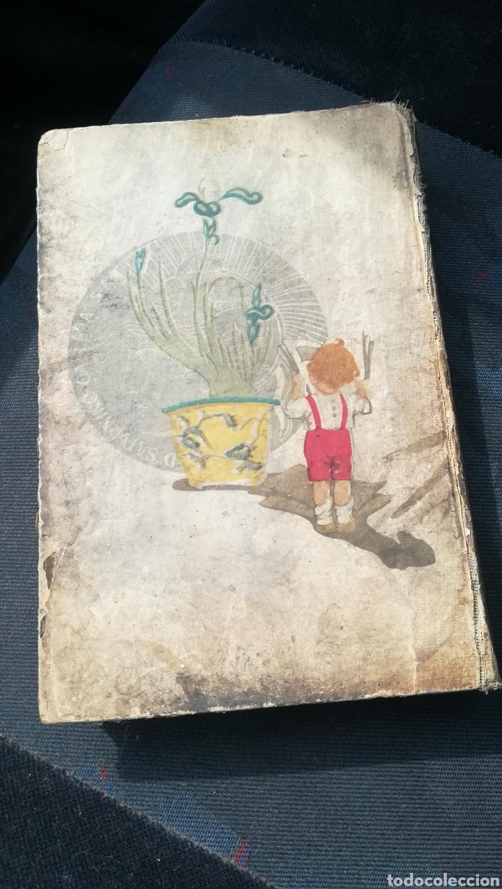 Libros antiguos: Robinson Suizo, de Saturnino Calleja - Foto 2 - 158679106