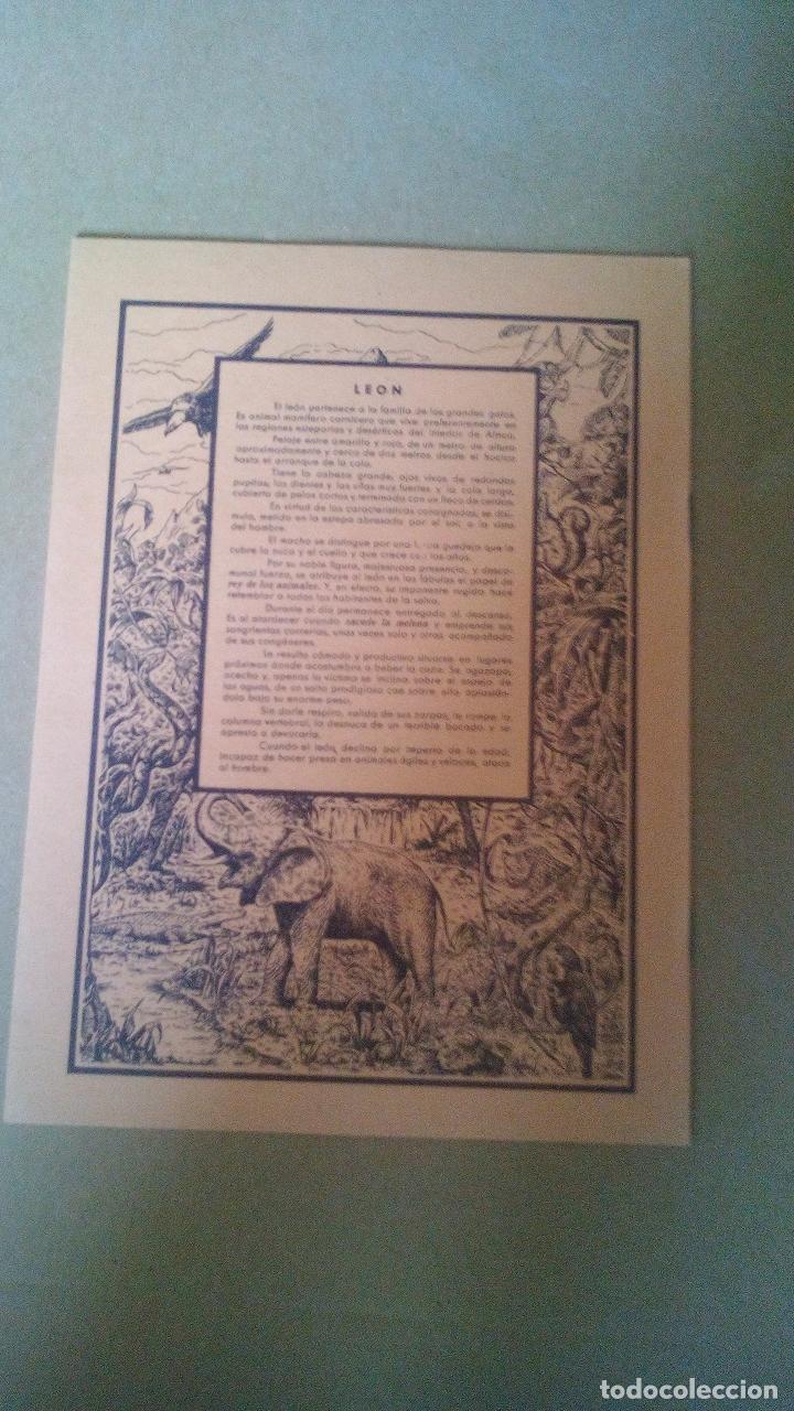 Libros antiguos: CUADERNO DE ESCUELA, PORTADA DE ANIMALES, LEONES - A ESTRENAR, PROCEDEN DE ANTIGUA PAPELERIA - Foto 2 - 169361492