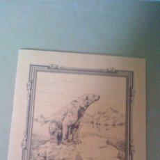 Libros antiguos: CUADERNO DE ESCUELA, PORTADA DE ANIMALES, OSO BLANCO - A ESTRENAR, PROCEDEN DE ANTIGUA PAPELERIA. Lote 169432940