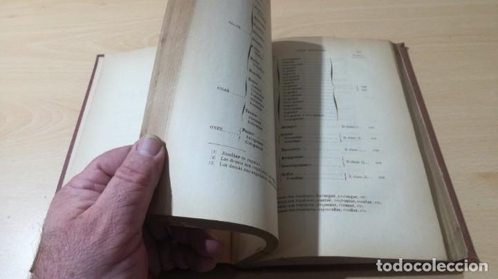 Libros antiguos: GRAMATICA LENGUA CASTELLANA - 1883 REAL ACADEMIA ESPAÑOLA - GREGORIO HERNANDO MADRID - Foto 13 - 177843732