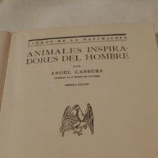 Libros antiguos: 1929. ÁNGEL CABRERA LOS ANIMALES INSPIRADORES DEL HOMBRE 1ª EDICIÓN. Lote 179330241