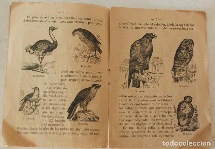 Libros antiguos: RARO HISTORIA NATURAL-LECTURAS AMENAS INSTRUCTIVAS NIÑOS -LAS AVES- CALLEJA Y GUILLERMO HERRERO 1891 - Foto 2 - 194735008
