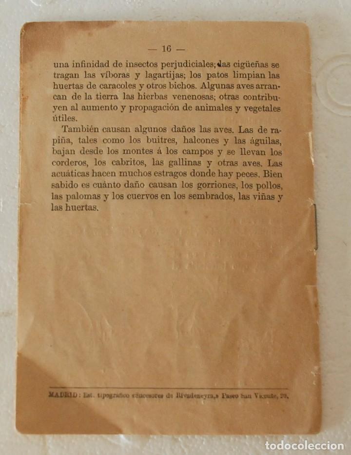 Libros antiguos: RARO HISTORIA NATURAL-LECTURAS AMENAS INSTRUCTIVAS NIÑOS -LAS AVES- CALLEJA Y GUILLERMO HERRERO 1891 - Foto 4 - 194735008