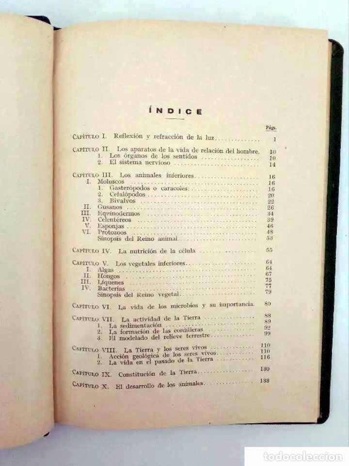 Libros antiguos: INICIACIÓN EN LAS CIENCIAS FÍSICONATURALES. TERCER CURSO (Salustio Alvarado) SGP, 1936 - Foto 8 - 195123403
