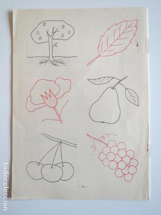 Libros antiguos: CUADERNOS AMIGUITOS PRIMERAS LETRAS Y DIBUJOS 4 SIN USAR 1959 J. ALGORA EDITORIAL SANTIAGO RODRIGUEZ - Foto 2 - 288936178