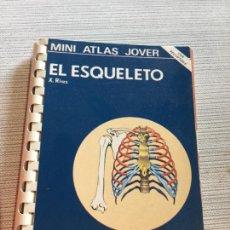 Libros antiguos: ANTIGUO LIBRO EL ESQUELETO MINI ATLAS JOVER POR X. RIUS AÑOS 60. Lote 233158715
