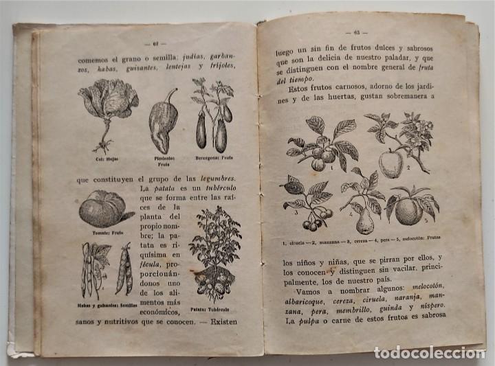 Libros antiguos: LO QUE NOS RODEA, 50 LECCIONES DE COSAS - MANUEL MARINEL-LO - DIBUJOS OPISSO - AÑO 1931 - Foto 9 - 276911928