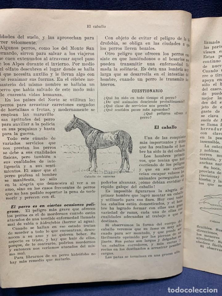 Libros antiguos: INTRODUCCION A LA ZOOLOGIA ED INDUSTRIAS GRAFICAS SEIX & BARRAL HERMS 23X18CMS - Foto 7 - 287996533