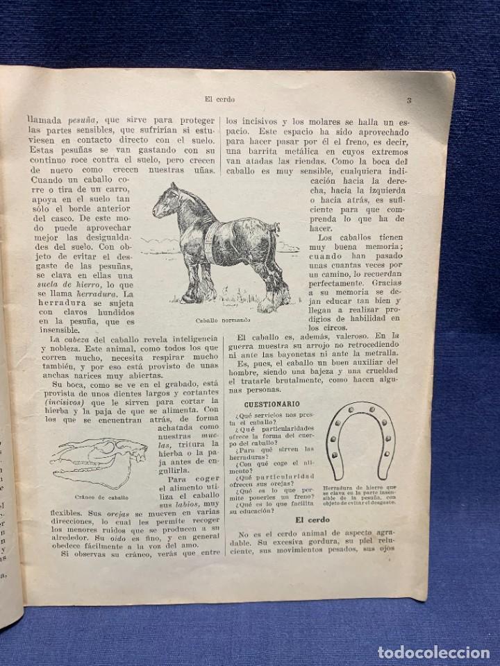 Libros antiguos: INTRODUCCION A LA ZOOLOGIA ED INDUSTRIAS GRAFICAS SEIX & BARRAL HERMS 23X18CMS - Foto 8 - 287996533