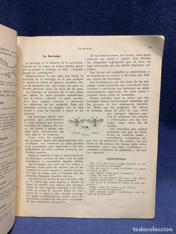 Libros antiguos: INTRODUCCION A LA ZOOLOGIA ED INDUSTRIAS GRAFICAS SEIX & BARRAL HERMS 23X18CMS - Foto 9 - 287996533