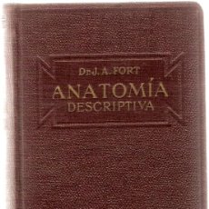 Libros antiguos: ANATOMIA DESCRIPTIVA / DR. J.A. FORT. BARCELONA : GUSTAVO GILI, 1925. 14 X 9 CM. 549 P. MEDICINA. Lote 27276082