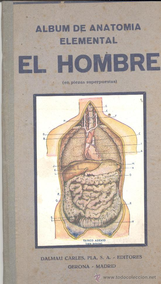 album anatomia elemental hombre mujer - Comprar en todocoleccion ...
