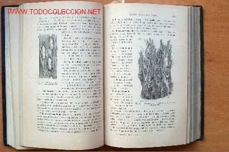 Libros antiguos: - Foto 2 - 26803856